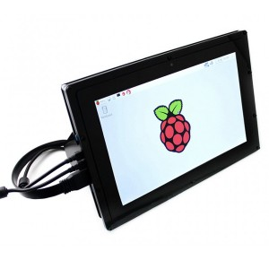 10.1inch HDMI LCD (B) (with case)